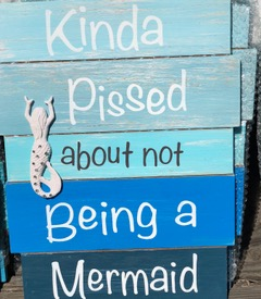 What Can We Learn From a Mermaid?